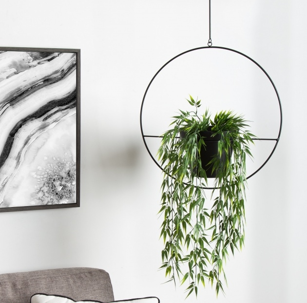 Simple Modern Hanging Planter Picture