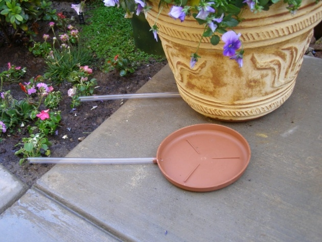 Simple Plant Drip Tray Picture