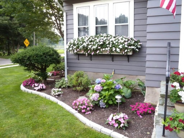 Simple Plants For Front Of House Ideas Image