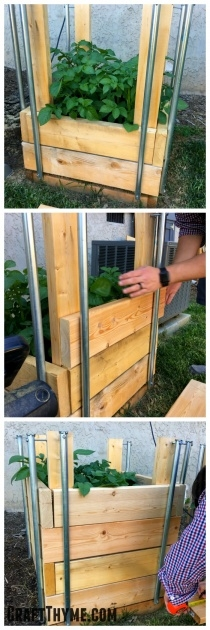 Simple Potato Planter Box Photo