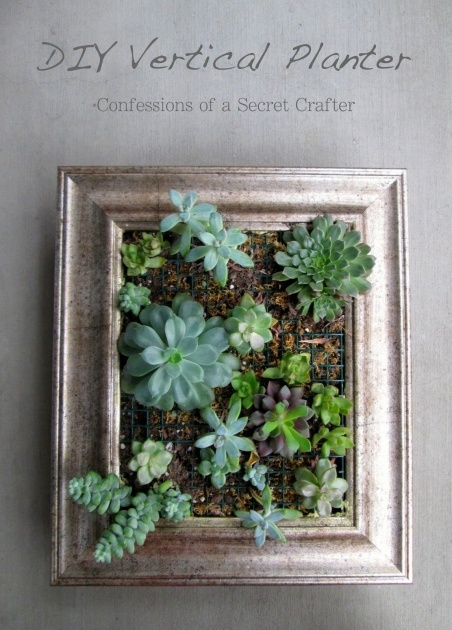 Simple Vertical Succulent Planter Image