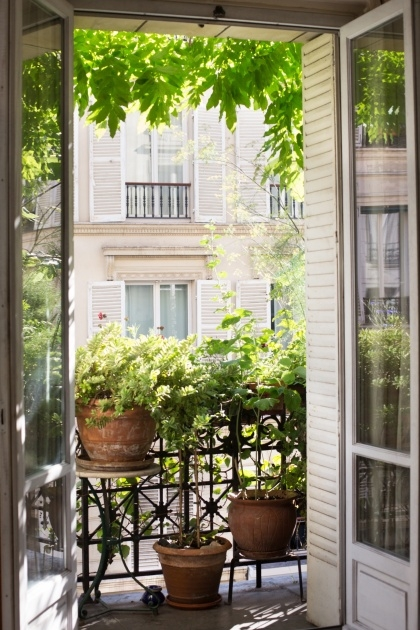 Splendid Balcony Plant Ideas Picture