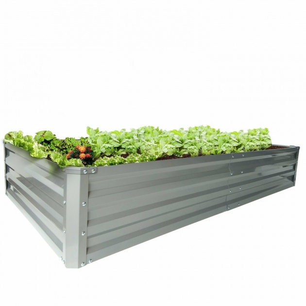 Splendid Galvanised Planter Boxes Photo