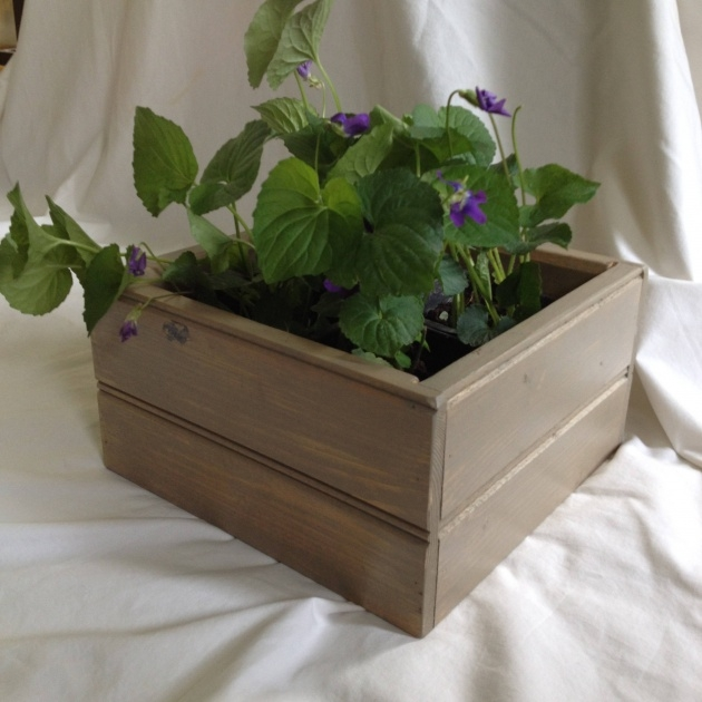 Splendid Indoor Planter Box Picture