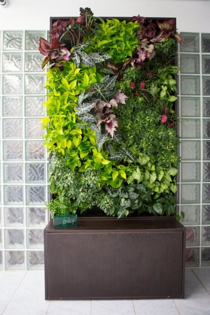 Splendid Living Wall Panel Outdoor Planter Picture