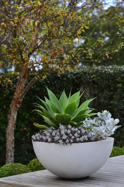 Splendid Modern Outdoor Pots And Planters Picture