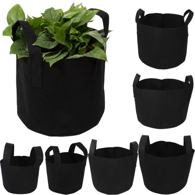 Splendid Plastic Bag For Plants Photo