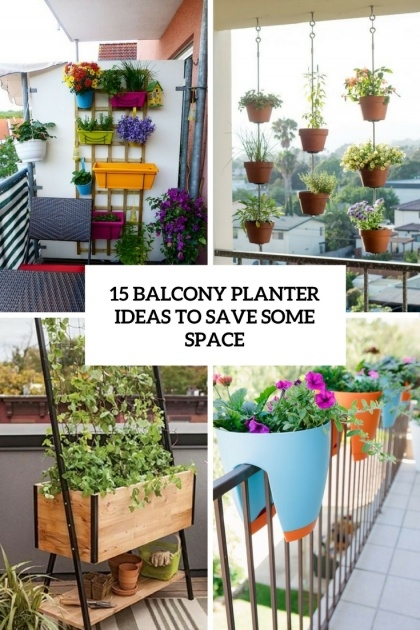 Stunning Balcony Plant Ideas Picture