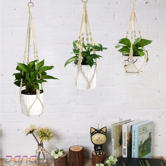Stunning Cheap Hanging Plants Picture