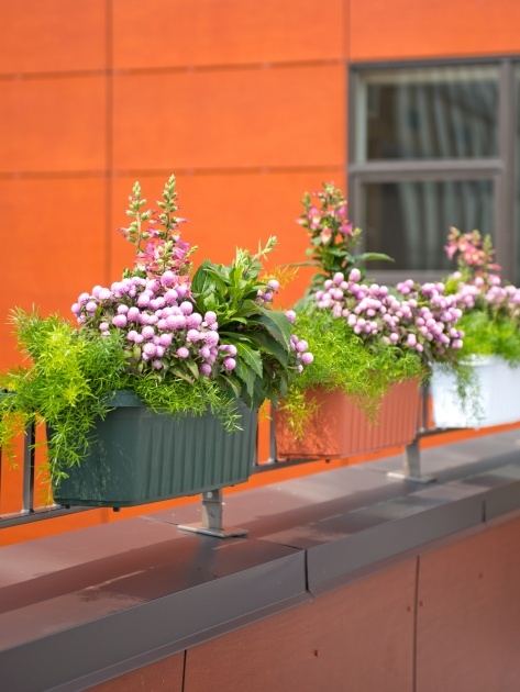 Stunning Deck Railing Planter Boxes Picture