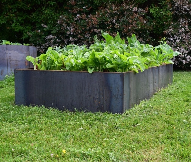 Stunning Steel Planter Boxes Photo