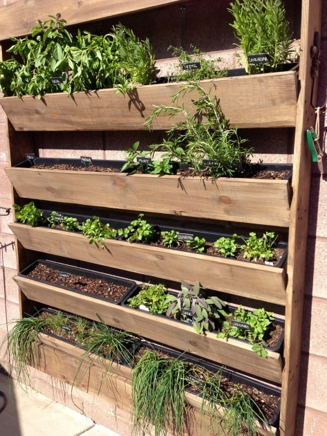 Stunning Vertical Planter Box Photo