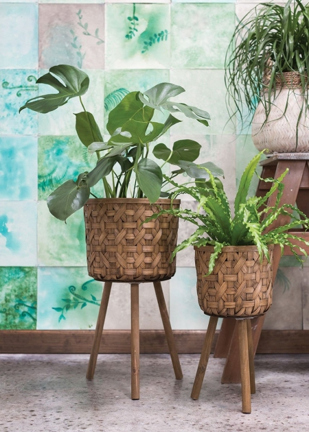 Stunning Woven Plant Basket Picture