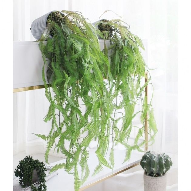 Stylish Cheap Hanging Plants Picture