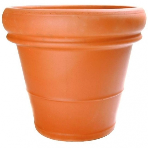 Stylish Clay Pots For Plants Photo