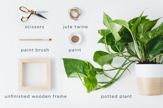 Stylish Diy Hanging Planter Picture