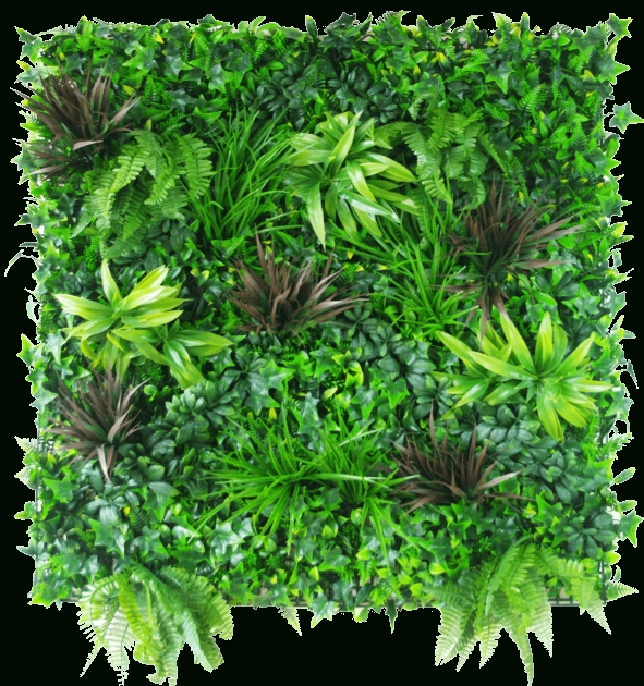 Stylish Green Wall Plants Photo