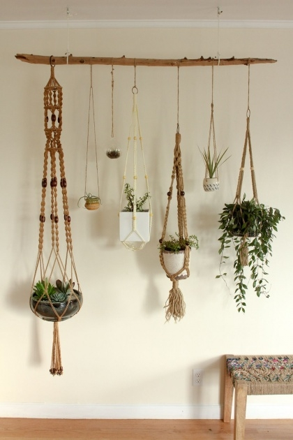 Stylish Hanging Plant Decor Image