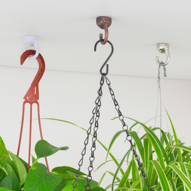 Stylish Hooks For Hanging Plants Picture