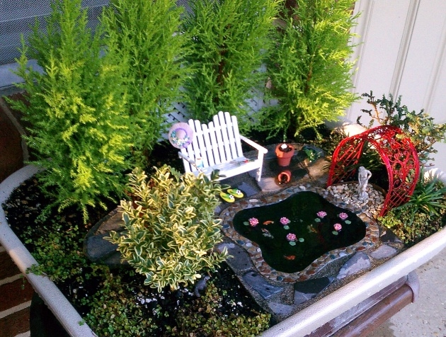 Stylish Indoor Miniature Gardens Image