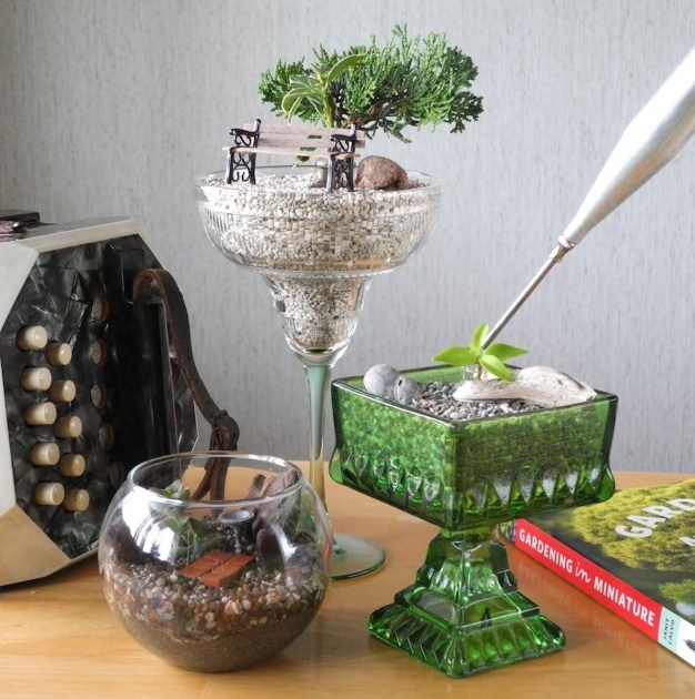 Stylish Indoor Miniature Gardens Picture