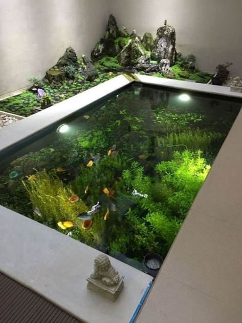 Stylish Indoor Water Garden Design Picture