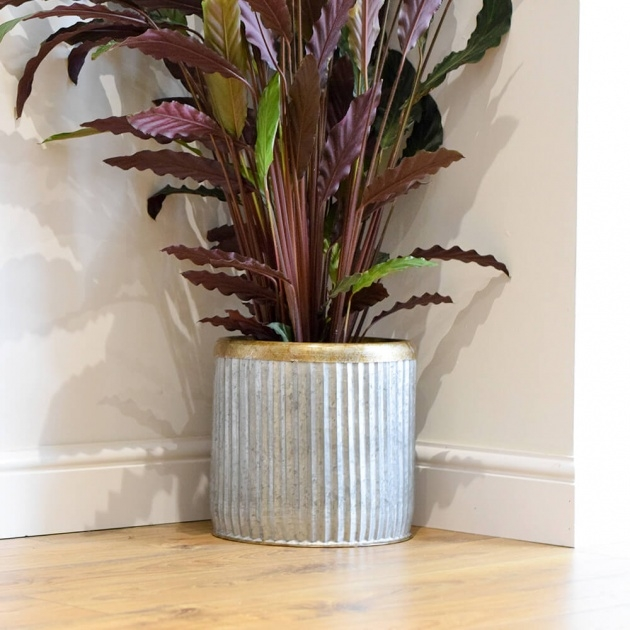 Stylish Large Indoor Plant Pots Photo