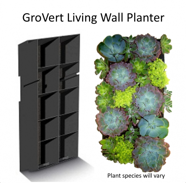 Stylish Living Wall Planter Image