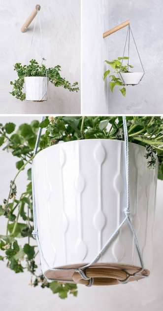 Stylish Modern Hanging Planter Image