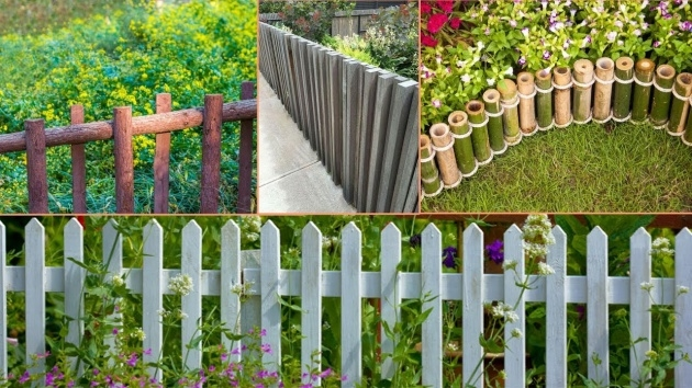 Stylish Plant Fence Ideas Image