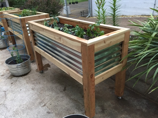 Stylish Planter On Wheels Picture