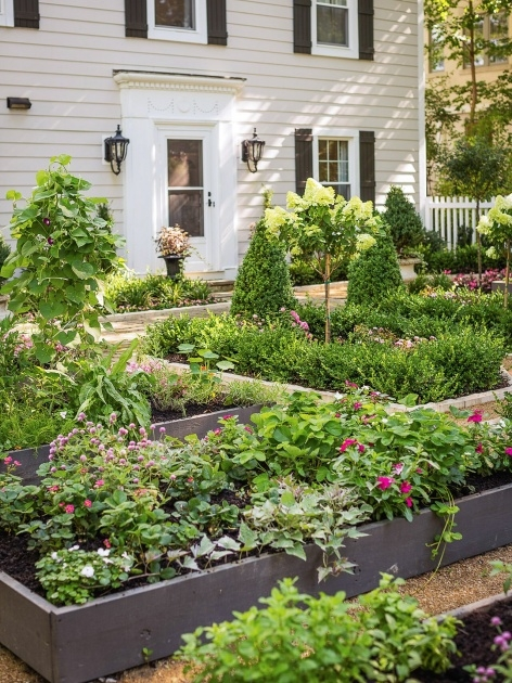 Stylish Plants For Front Of House Ideas Photo