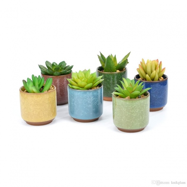 Stylish Small Plant Pots Photo