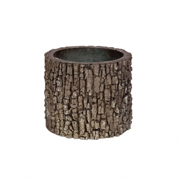 Stylish Tree Bark Planters Picture