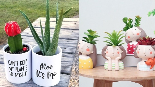 Stylish Unique Succulent Planters Image