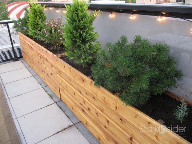 Stylish Vegetable Planter Box Picture