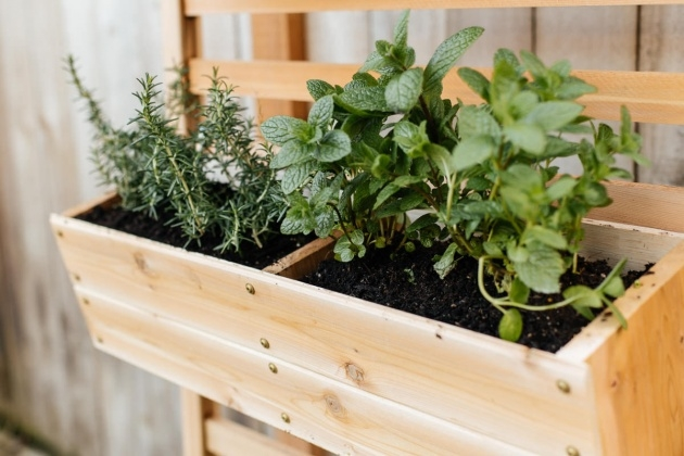 Stylish Vertical Planter Box Photo