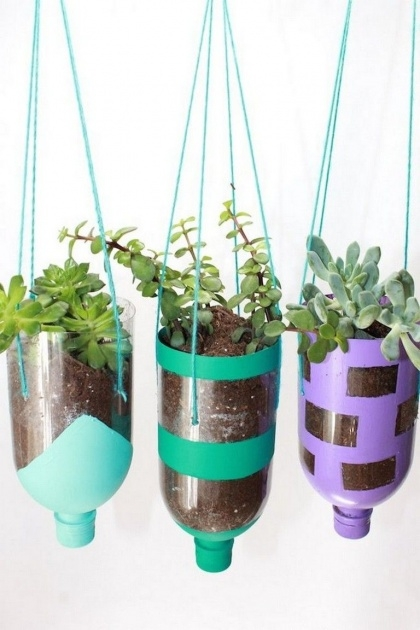 Stylish Water Bottle Planter Picture