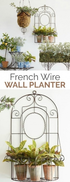 Stylish Wire Wall Planter Photo
