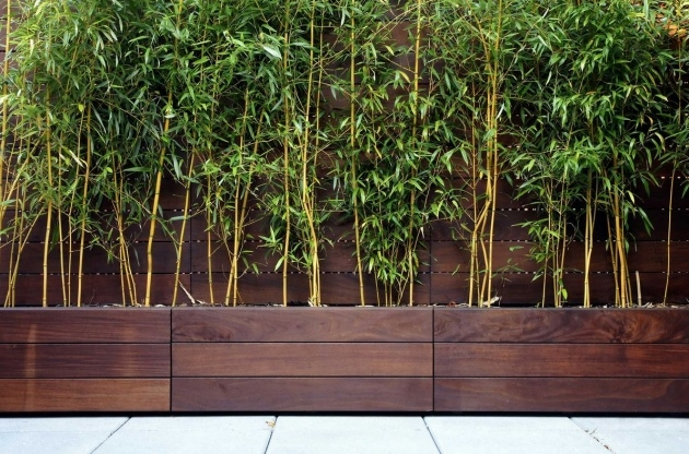 Super Cool Bamboo Planter Box Picture