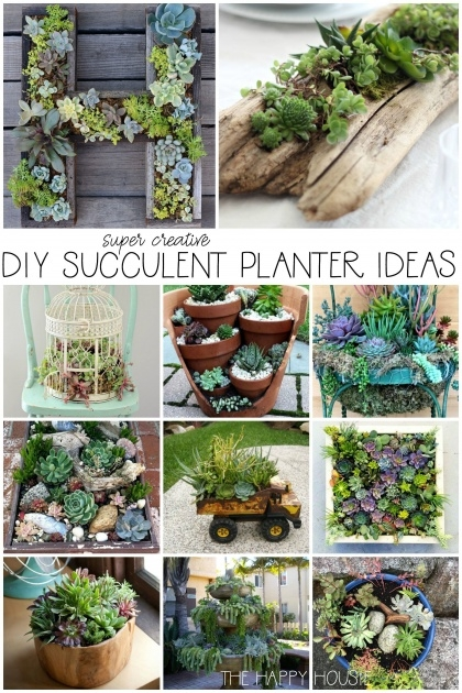 Super Cool Creative Planter Ideas Photo