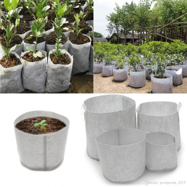 Super Cool Fabric Planter Bags Picture
