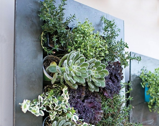 Super Cool Large Outdoor Wall Planters Photo