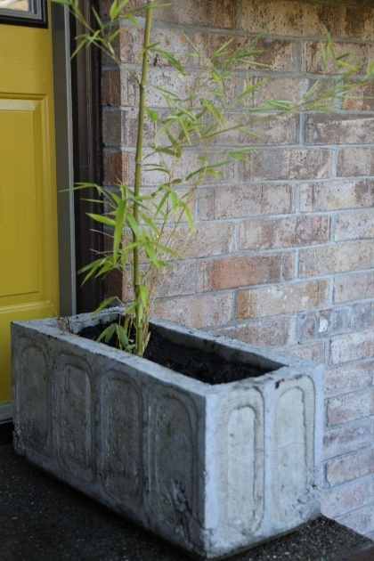 Super Cool Making Concrete Planters Picture