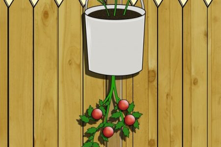 Upside Down Tomato Planter Diy