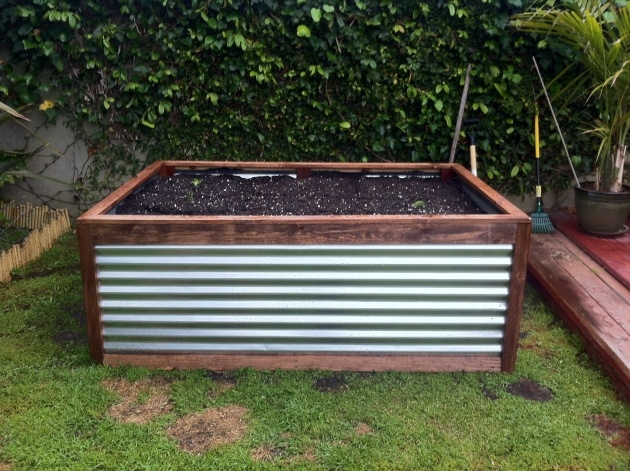 Surprising Galvanized Steel Planter Image