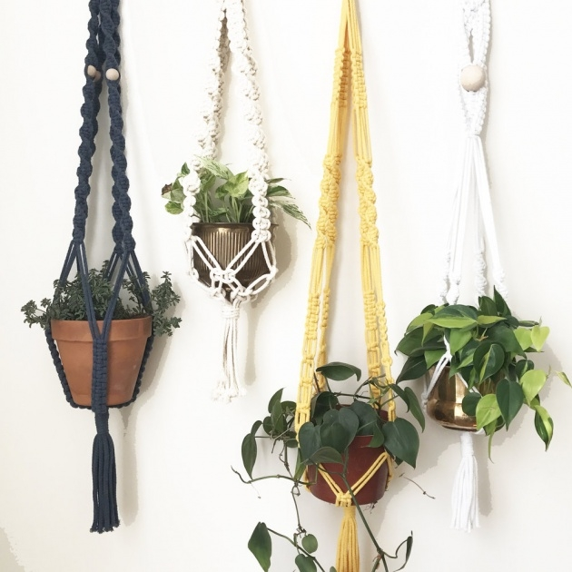 Surprising Macrame Plant Hanger Picture
