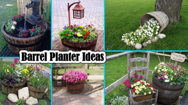 Surprising Planter Ideas Photo