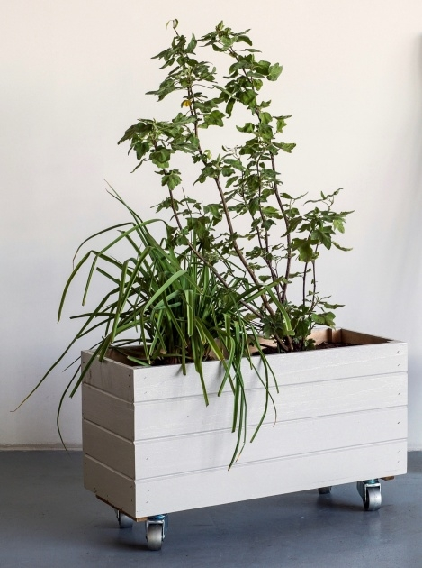 Surprising Planter On Wheels Picture