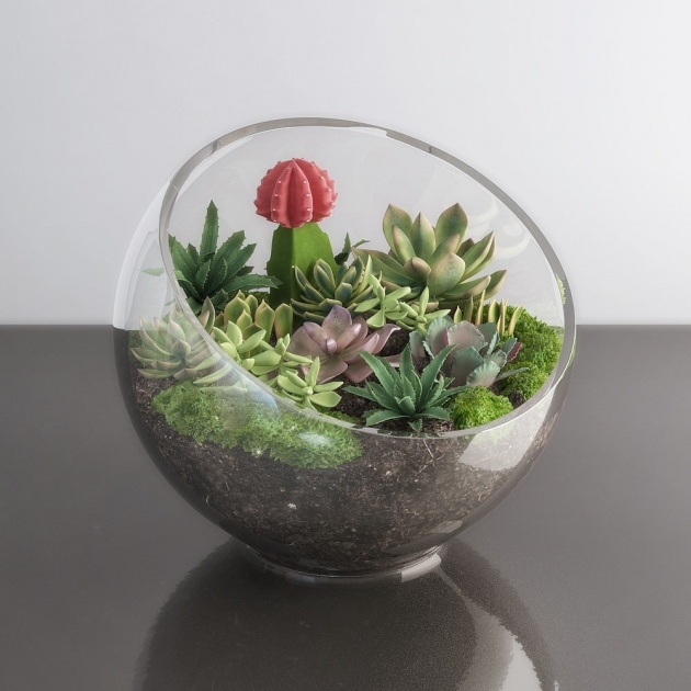Surprising Plants In Glass Bowl Picture